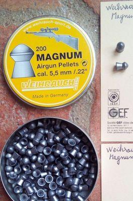Comparatif plombs 5,5  .22 à 48m - Précision ZWeihrauch_Magnum_002_mini