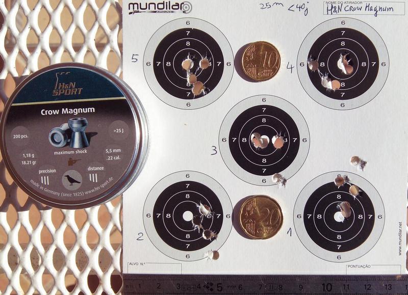 Comparatif plombs 5,5 .22 à 25m - Précision H&N_Crow-Magnum_5.5_25m_201510_mini
